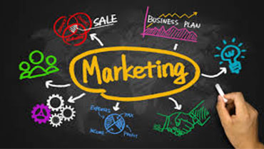 Marketing and sales essentials